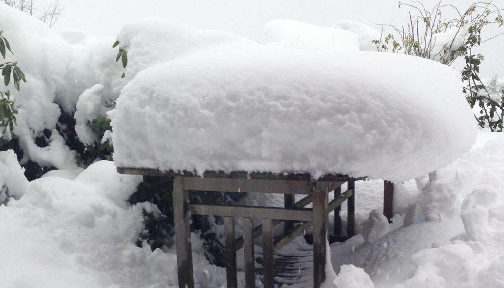 Englegaarden får sne - vi fjerner snen fra din lejlighed