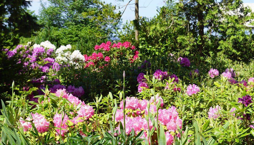 Have af englegaarden - rundt om hjørnet ligger Høje Tåstrup