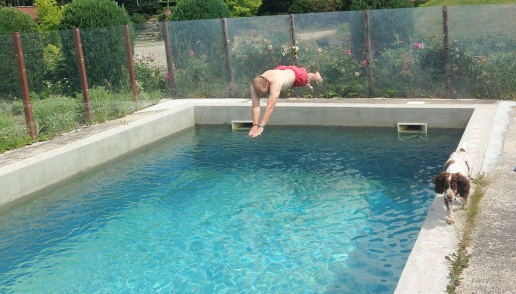Hund og pool hos Englegaarden - Hvis du skal have en midlertidigbolig tæt ved Ølstykke